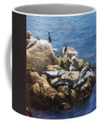 Sunning Seals Coffee Mug