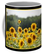 Sunny Days 8466 Coffee Mug