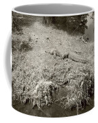 Sunny Gator Sepia  Coffee Mug