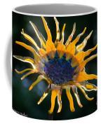 Sunny Glass Coffee Mug