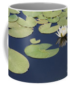 Sunny Lily Pond Coffee Mug