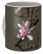 Sunny Pink Magnolia Blossom Coffee Mug