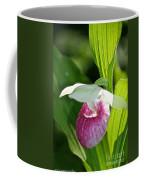 Sunny Slipper Coffee Mug
