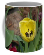 Sunny Yellow Tulips Series  Picture D Coffee Mug