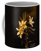 Sunrise Ajo Lily Coffee Mug