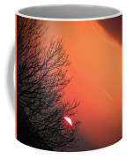 Sunrise And Hibernating Tree Coffee Mug