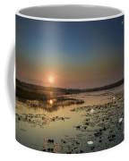 Sunrise And Water Lilies Coffee Mug