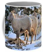 Sunrise Club Coffee Mug