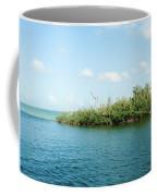 Sunrise Landing Coffee Mug