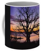 Sunrise Over Coongee Lakes With Moon.  Coffee Mug