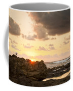 Sunrise Seagull On Rocks Coffee Mug