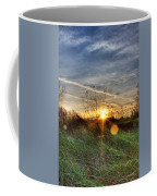 Sunrise Through Grass Coffee Mug