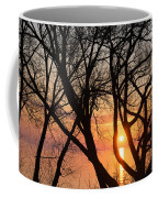 Sunrise Through The Chaos Of Willow Branches Coffee Mug