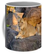 Sunset At Pride Rock Coffee Mug
