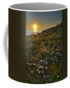 Sunset At The Beach  White Flowers On The Sand Coffee Mug by Guido Montanes Castillo