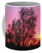 Sunset In April- Silute Lithuania Coffee Mug