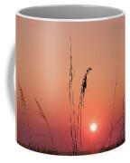 Sunset In Tall Grass Coffee Mug