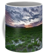 Sunset In The Swamp Coffee Mug
