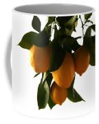 Sunset Lemons Coffee Mug