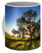 Sunset Oak Coffee Mug
