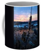 Sunset On The Pond Coffee Mug