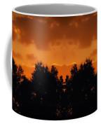 Sunset Over Jackson Michigan Mirror Image Coffee Mug