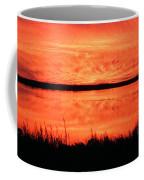Sunset Panarama Lacassine Coffee Mug
