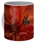 Sunset Red Dahlia Coffee Mug