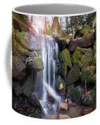 Sunset Waterfalls In Marlay Park Coffee Mug