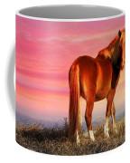 Sunset Wild Coffee Mug