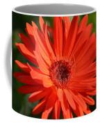 Sunshine Gerber Coffee Mug