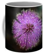 Sunshine Mimosa Coffee Mug