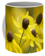 Sunshine On A Cloudy Day Coffee Mug