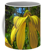 Sunshine On My Shoulders Coffee Mug