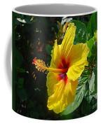 Sunshine Yellow Hibiscus With Red Throat Coffee Mug
