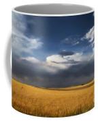 Sure Wish It Would Coffee Mug by Jon Burch Photography