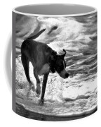 Surfer Bird Coffee Mug