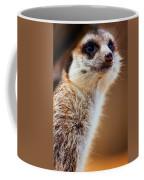Suricata Coffee Mug