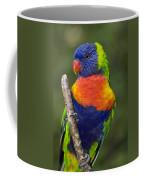 Swainsons Lorikeet Coffee Mug