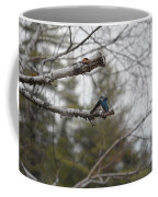 Swallow Discussion Coffee Mug