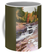 Swallow Falls Coffee Mug