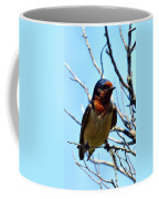 Swallow Glance Coffee Mug