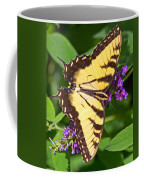 Swallow Tail Butterfly Coffee Mug