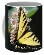 Swallowtail Butterfly And Milkweed Flowers Coffee Mug