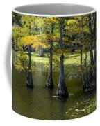 Swamp Color Coffee Mug