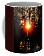 Swamp Light Coffee Mug