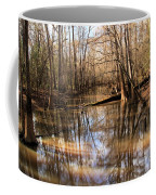 Swamp Reflections Coffee Mug
