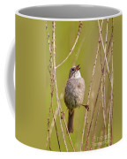 Swamp Sparrow Split Decision Coffee Mug
