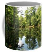 Swampland Reflection At The Plantation Coffee Mug