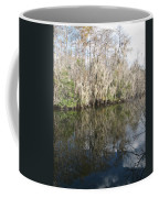 Bold Cypress Reflection Coffee Mug